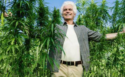 Michigan Cannabis Business