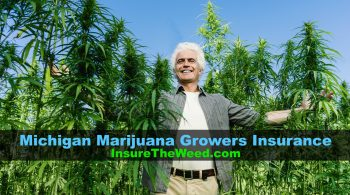 insurance for marijuana growers in michigan