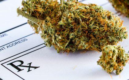 Michigan Marijuana Industry Insurance