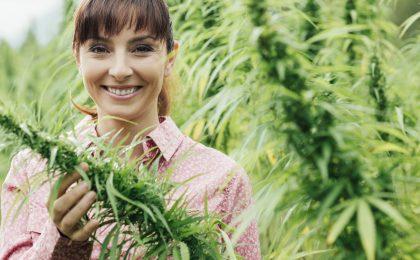 marijuana insurance Michigan